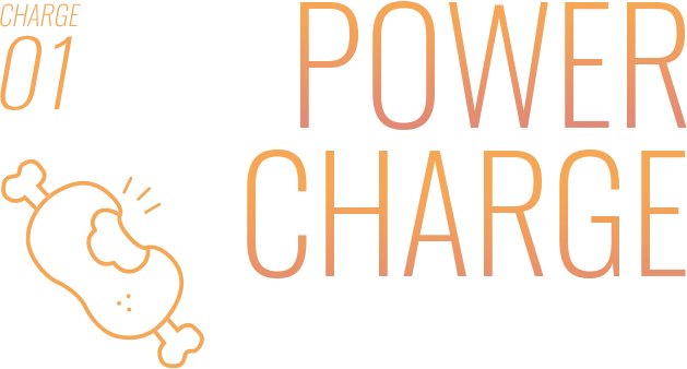 POWER CHARGE